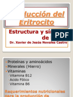 7a S_Producción del Eritrocito,Estruct_Sintesis Hb