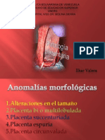 patologia placentaria