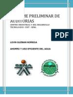 Informe Preliminar de Auditorias Levin