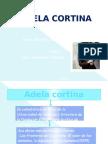 A-cortina - Salamanca - 1103