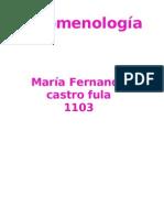 fenomenologia - Castro -1103