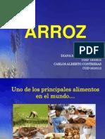Expo Arroz