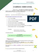Conjuntos-numericos