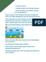 Geografi Folio