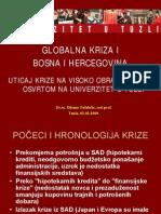 Globalna Kriza i Bosna i Hercegovina