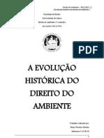 Evolução Histórica do Direito do Ambiente - Diogo Martins, nº18110