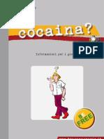 Informazioni per i giovani COCAINA - DIPARTIMENTO POLITICHE ANTIDROGA