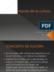 Dimensiones de La Cultura Expo