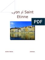 Lyon și Saint Etinne