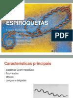 Espiroquetas - Treponema pallidum