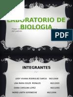 LABORATORIO DE BIOLOGIA.pptx TRABAJO.laboratorios.pptx