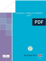 Final Stability Report 2010