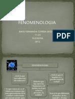 FENOMENOLOGIA - Correa -1103