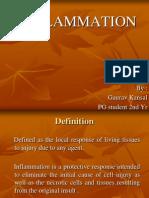 7 Basics of Inflammation