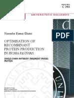 Improvement of Protein Yield in P.pastoris