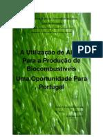A Utilização de Algas para a Produção de Biocombustíveis - Uma Oportunidade para Portugal