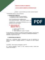 3-REVISÃO DA CLASSIFICAÇÃO DE IMPACTO AMBIENTAL_aula