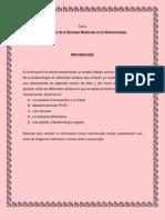 IMPORTANCIA DE LA BIOTECNOLOGÍA EN NUESTRA VIDA DIARIA