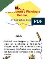 celula_1