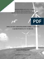 O Impacto Dos Aerogeradores Sobre a Avifauna e Quiropterofauna No Brasil
