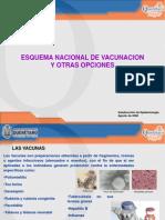 esquemanacionaldevacunacion-090812141252-phpapp02