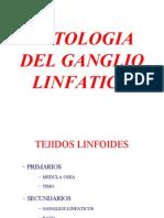 Ganglio Linfatico Final