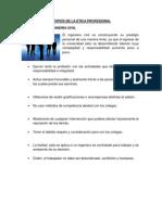 PRINCIPALES PRINCIPIOS DE LA ÉTICA PROFESIONAL