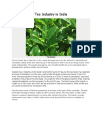 Tea Industry in India