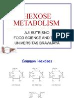 6b. hexose_Metabo