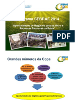 Programa Sebrae 2014
