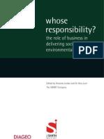 Whose responsability?