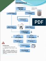 Ensayo Para El Diagnostico de Rotavirus
