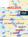 NUCLEUS - MORPHOLOGY AND FUNCTIONS