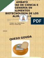 92542354-QUESO-GOUDA
