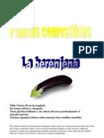 Plantas Comestibles 5A