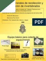 Métodos para la colecta y conservación de invertebrados.pdf