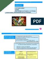 2_Biodiversidad (1)