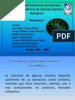 Enzimas Expo Compu