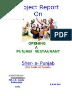 Rohan Jain's Sher-E-Punjab Project