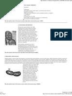 Nitrosomonas & Nitrobacter