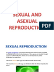 Asexual and Sexual