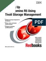 Backing Up Lotus Domino R5 Using Tivoli Storage Management Sg245247