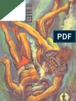 07. Romulus Barbulescu - Simbamuenni