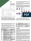 Granulopoesis Dan Trombopoesis