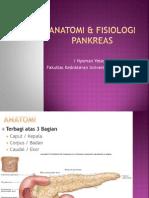 Anatomi & Fisiologi Pankreas