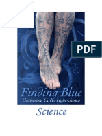 Finding Blue Part 2