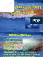 Pre Zen Tare Biologie Marea Neagra