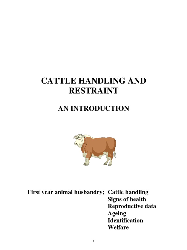 "Emasculator Bloodless Castrator Bull Cattle Livestock Veterinary 18/"" cord stop"