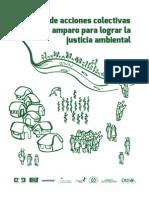 Manual de acciones colectivas y amparo para lograr la justicia ambiental