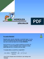 Hidroliza Sarurilor